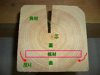 木材の断面解説